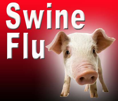 swine-flu-sushaanth-homeoclinic-chennai